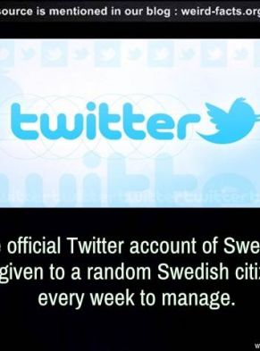 Suedia / Twitter